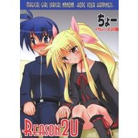 Doujinshi - Novel - Magical Girl Lyrical Nanoha (REASON 2U) / Choujin Keikaku
