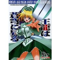 Doujinshi - Novel - Magical Girl Lyrical Nanoha (王龍は蒼穹に昇る) / Choujin Keikaku
