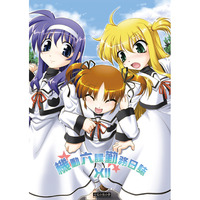 Doujinshi - Novel - Anthology - Magical Girl Lyrical Nanoha / Nanoha & Chrono & Yuuno (機動六課勤務日誌XII) / Manatsu no Yoru no Yume