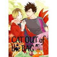 [Boys Love (Yaoi) : R18] Doujinshi - Haikyuu!! / Kuroo x Kenma (CAT OUT of the BAG) / ALEGRE.