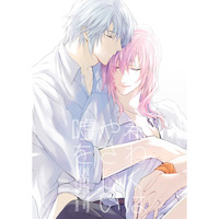 Doujinshi - Final Fantasy XIII / Hope Estheim x Lightning (希わくは、やさしい嘘を) / CassiS