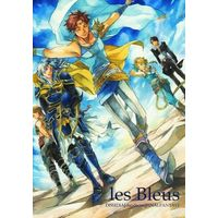 Doujinshi - Final Fantasy Series / Butz & Warriors of Light (1es Bleus) / Mr.Hamlet