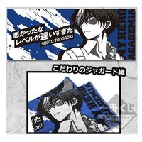Towels - My Hero Academia / Todoroki Shouto