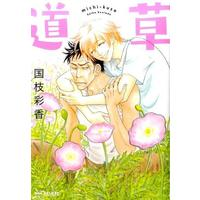 Boys Love (Yaoi) Comics - B-boy COMICS (道草 / 国枝彩香)