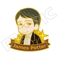 Pin - Harry Potter Series / James Potter