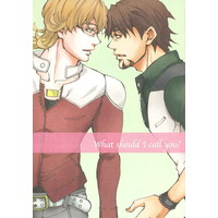 Doujinshi - TIGER & BUNNY / Barnaby x Kotetsu (what should I call you?) / albion