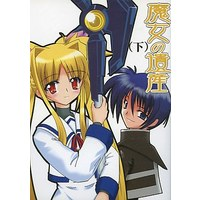 Doujinshi - Novel - Magical Girl Lyrical Nanoha (魔女の遺産 (下)) / Choujin Keikaku
