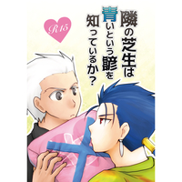 Doujinshi - Fate/hollow ataraxia / Lancer x Archer & Lancer (Fate/stay night) x Archer (Fate/stay night) (隣の芝生は青いという諺を知っているか?) / カワホリ