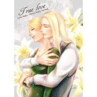 Doujinshi - Harry Potter Series (True love) / ZANBO