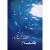 Doujinshi - Novel - K (K Project) / Mikoto x Reisi (Andante Cantabile アンダンテ カンタービレ) / ポンタシェーベ