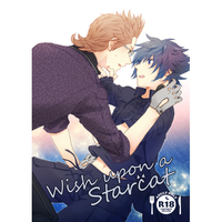 [Boys Love (Yaoi) : R18] Doujinshi - Final Fantasy XV / Ignis x Noctis (Wish upon a starcat) / sorakara