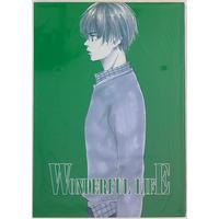 Doujinshi - Mobile Suit Gundam Wing (WONDERFUL LIFE # 4) / ハンバーグマニア/破壊ダー