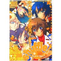 Doujinshi - Mobile Suit Gundam Seed Destiny / All Characters (Gundam series) (シャッフル) / kashi