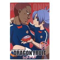 [Boys Love (Yaoi) : R18] Doujinshi - Novel - Inazuma Eleven GO / Fubuki x Someoka (DRAGON FRUIT) / Aniki Otokodou