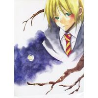 Doujinshi - Harry Potter Series / Remus John Lupin (Lamp of Hope) / いちばん星