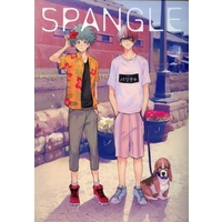 Doujinshi - Illustration book - My Hero Academia / Midoriya Izuku & Todoroki Shouto (SPANGLE) / Ordinary Life