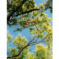Doujinshi - Novel - A3! / Takatoo Tasuku x Tsukioka Tsumugi (All year around falling in Love) / cresc