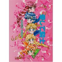 Doujinshi - Sailor Moon / Sailor Moon & Mizuno Ami (Sailor Mercury) & Aino Minako (Sailor Venus) & All Characters (愛して騎士) / KIDDY LAND