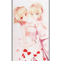 Card Game Playmat - Fate/stay night / Arcueid Brunestud & Saber