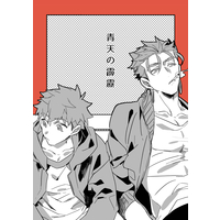 Doujinshi - Fate/stay night / Lancer x Shirou Emiya (青天の霹靂) / Onigiri