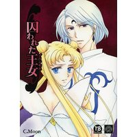 [NL:R18] Doujinshi - Novel - Sailor Moon / Tsukino Usagi (囚われた王女 プリンセス) / C.MOON