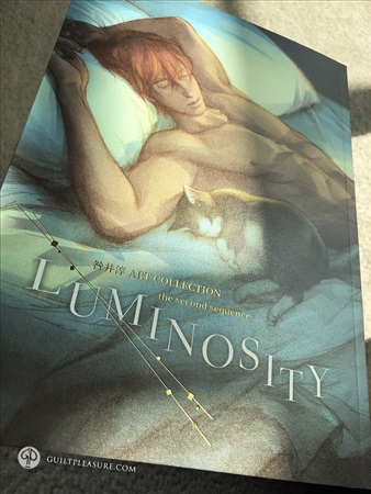 Doujinshi - Illustration book - Luminosity / Guilt│Pleasure