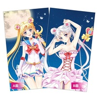 Dakimakura Cover - Sailor Moon / Princess Serenity & Sailor Moon