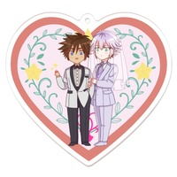 Key Chain - KINGDOM HEARTS / Riku & Sora