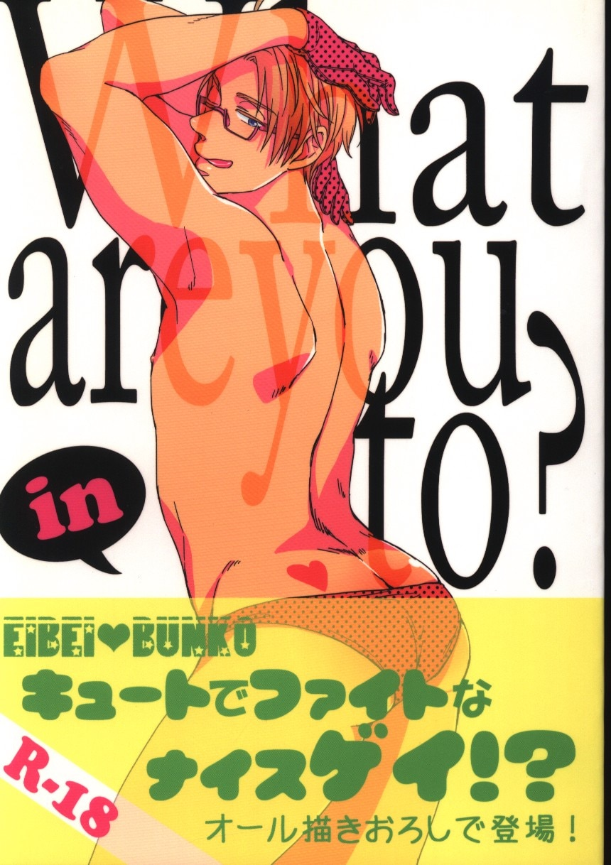 [Boys Love (Yaoi) : R18] Doujinshi - Hetalia / United Kingdom x America (What are you in to?) / ギゴあん
