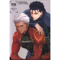 [Boys Love (Yaoi) : R18] Doujinshi - Fate/Grand Order / Archer (Fate/stay night) x Lancer (Fate/stay night) (だから嫌な予感しかしないと言ったんだ) / Dibid