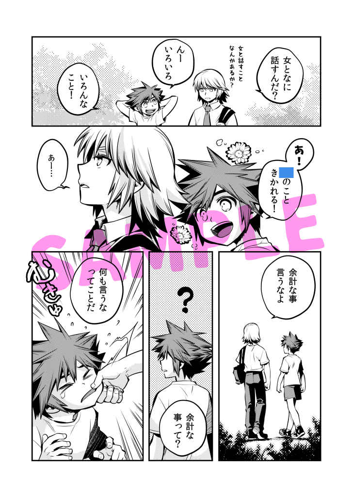 [Boys Love (Yaoi) : R18] Doujinshi - KINGDOM HEARTS / Riku x Sora (アクロスザボーダーライン) / Karasuma Pink Higashiiru
