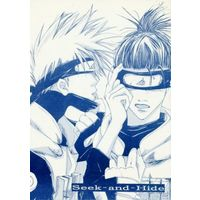 Doujinshi - Novel - NARUTO / Kakashi x Iruka (Seek‐and‐Hide) / HOLIDAY