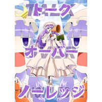 Doujinshi - Touhou Project / Patchouli Knowledge (トークオーバーノーレッジ) / Babasoyer