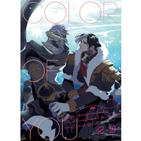 [Boys Love (Yaoi) : R18] Doujinshi - Shadowbringers / Warriors of Light x Emet-Selch (COLOR OF YOU) / Amayonohoshi