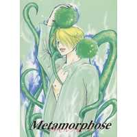 [Boys Love (Yaoi) : R18] Doujinshi - Novel - ONE PIECE / Zoro x Sanji (Metamorphose メタモルフォーゼ) / 架空の卵