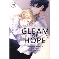 [Boys Love (Yaoi) : R18] Doujinshi - Novel - BANANA FISH / Ash x Eiji (the GLEAM OF HOPE *文庫) / starry night
