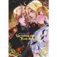 [Boys Love (Yaoi) : R18] Doujinshi - Novel - Fullmetal Alchemist / Alphonse x Edward (The falling star from the holies) / 蜂巣Bomb