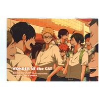 Doujinshi - Haikyuu!! (WONDER of the CAT) / ES plus